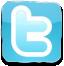 Twitter logo button